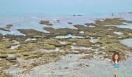 『沖繩自助旅行』沖繩租車自駕自由行南部無敵海景拍照好景點 — 知念岬公園