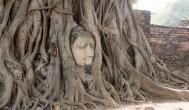『泰國曼谷自助旅行』大城世界遺產、樹中佛頭、瑪哈泰寺、AK一日遊行程規劃